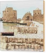 Do-00423 Citadel Of Sidon Wood Print
