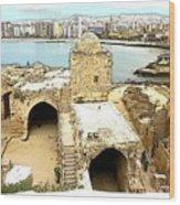 Do-00428 Citadel Looking On Sidon Wood Print