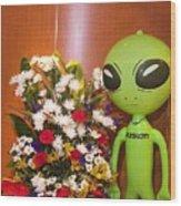Do Aliens Get Hay Fever Wood Print