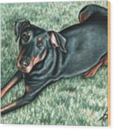 Dobermann Wood Print