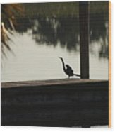 Dock Bird In Color Wood Print
