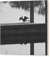 Dock Bird Pre Flight Wood Print