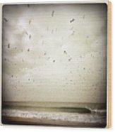 Dockweiler State Beach Wood Print