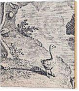 Dodo Bird, Hunted To Extinction Wood Print