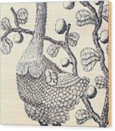 Dodo Bird Rodriguez Solitaire, Extinct Wood Print