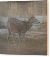 Doe In The Snow Wood Print