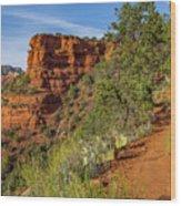 Doe Mountain Trail Wood Print