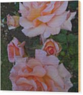Does Roses Has Thorns Or Does Thorns Has Roses Wood Print