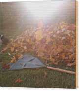 Dog And Autumn Leaves Wood Print