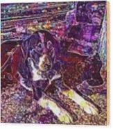 Dog Beautiful Animal Cute Puppy  Wood Print