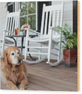 Dog Days Of Summer Wood Print