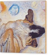 Dog Dreams Wood Print