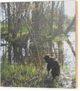 Dog Exploring Mississippi River Bank Wood Print