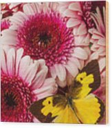 Dog Face Butterfly On Pink Mums Wood Print