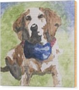 Dog In Bow Tie Wood Print