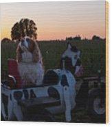 Dog In Cow Wagon  Wood Print