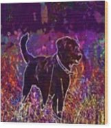 Dog Labrador Animal Canidae Canine  Wood Print