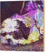 Dog Noddy Lhasa Apso Pet Puppy  Wood Print