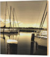 Dog River Marina Wood Print by Gulf Island Photography and Images