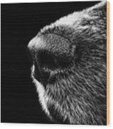 Dog Smeller Wood Print