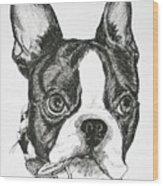 Dog Tags Wood Print