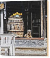 Dog Tavern With Oranges Wood Print