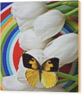 Dogface Butterfly On White Tulips Wood Print by Garry Gay