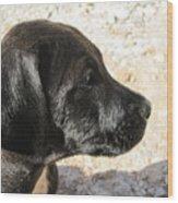 Doggi Wood Print