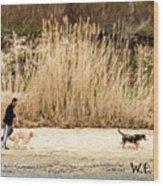 Dogs At Play Wood Print