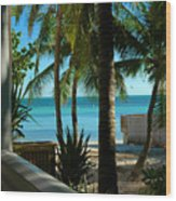 Dog's Beach Key West Fl Wood Print