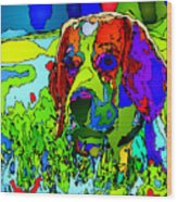 Dogs Can See In Color Wood Print