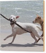 Dogs On The Beach Wood Print