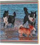 Dogs Playing On The Beach No. 2 L A With Decorative Ornate Printed Frame. Wood Print