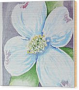 Dogwood Bloom Wood Print