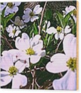 Dogwood Blossoms Pair Up Wood Print