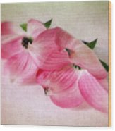 Dogwood Duet Wood Print