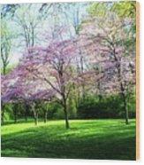 Dogwood Spring Wood Print