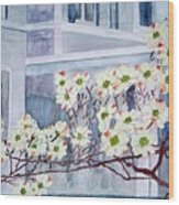 Dogwood Time In Oldtown Wood Print