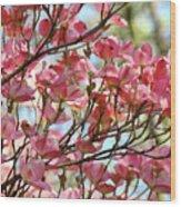 Dogwood Tree Landscape Art Prints Blue Sky Baslee Troutman Wood Print