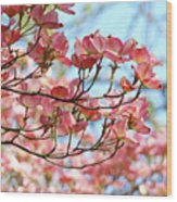 Dogwood Tree Landscape Pink Dogwood Flowers Art Wood Print
