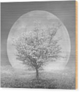 Dogwoods In The Moon Black And White Wood Print