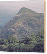 Dolbadarn Castle Close To Llanberis Pass Wood Print