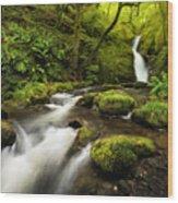 Dolgoch Falls Wood Print