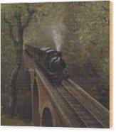 Dolgoch Viaduct Wood Print