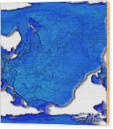 Dolphin World Map Wood Print