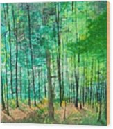 Dolly Sods Trees Wood Print