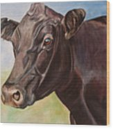Dolly The Angus Cow Wood Print