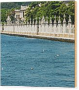 Dolmabahce Palace Tower And Fence Wood Print