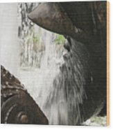 Dolphin Fountain 2 Wood Print