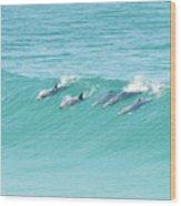 Dolphin Team Wood Print